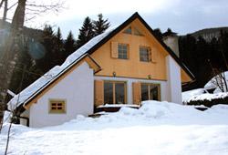 Chalet Planina (Slovenia)